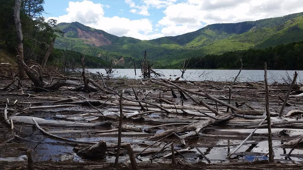 Los árboles muertos son el triste  testimonio de la inundación del valle.