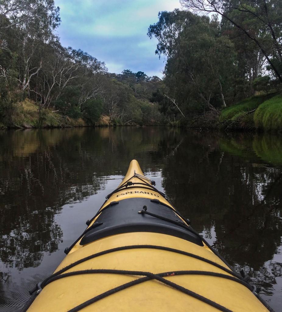 Captura de un momento de aventura que tuvimos kayakeando por el río Yarra