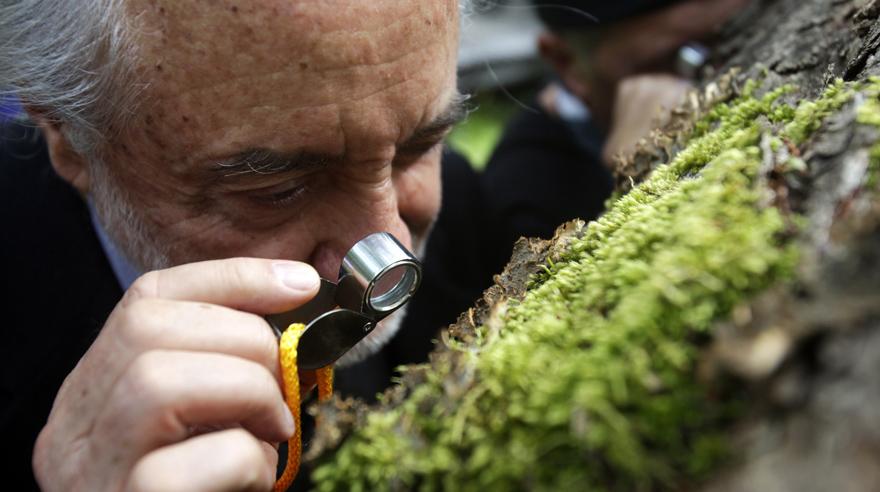 CH02. PUERTO WILLIAMS (CHILE), 11/02/2016.- Fotografía del 28 de enero de 2016, que muestra a un hombre observando con una lupa la biodiversidad durante una visita al Parque Etnobotánico Omora, en la ciudad de Puerto Williams, localidad distante a 3611 Kilómetros al sur de Santiago (Chile). La Reserva de Biosfera Cabo de Hornos, situada en el extremo sur del continente americano y considerada una de las últimas ecorregiones vírgenes del planeta, ha celebrado su décimo aniversario y se postula como uno de los polos de atracción del turismo científico y sustentable de Chile. EFE/Sebastian Silva