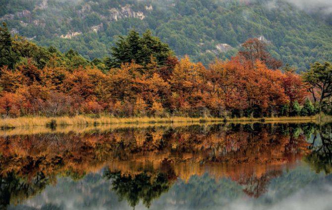 Portafolio Fotografico de Mariano Peppi